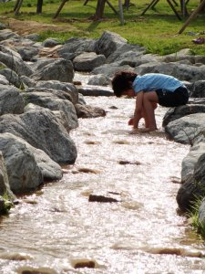 Playing in a Stream